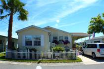 Homes for Sale in Lake Haven, Dunedin, Florida $89,900