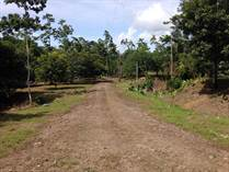 Lots and Land for Sale in Bribri , Limón $19,000
