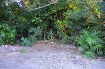 Lots and Land for Sale in Rancho San Martin, Akumal, Quintana Roo $100,000