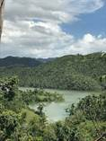 Lots and Land for Sale in Bo. Ortiz, Toa Alta, Puerto Rico $37,500