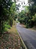 Lots and Land for Sale in Hacienda Jordan, RIO GRANDE, Puerto Rico $375,000