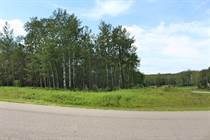 Lots and Land for Sale in Legends Estates, MD of Bonnyville , Alberta $69,900