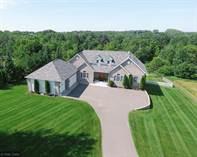 Homes for Sale in Minnesota, Livonia Twp, Minnesota $499,900