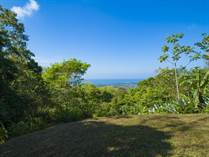 Lots and Land for Sale in Uvita, Puntarenas $285,000