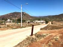 Lots and Land for Sale in Punta Colonet, Baja California $19,000