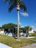 Homes for Sale in Sunny Grove MHP, Clearwater, Florida $13,000