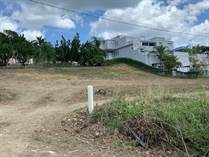 Homes for Sale in ESTANCIAS VILLA ELENA, Moca, Puerto Rico $0