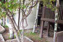 Homes for Sale in Angel Fire, New Mexico $66,900