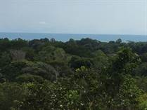 Lots and Land for Sale in Bejuco, Puntarenas $699,000