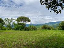 Lots and Land for Sale in Tinamastes, Puntarenas $60,000