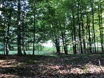 Lots and Land for Sale in Manistee Township, Manistee , Michigan $259,000