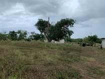 Lots and Land for Sale in BO HATO ABAJO, Arecibo, Puerto Rico $49,900