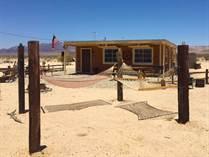 Homes for Sale in Wonder Valley, Twentynine Palms, California $125,000