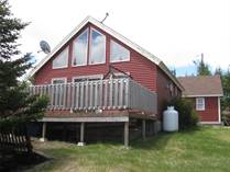 Homes for Sale in Newfoundland, Salmonier Line, Newfoundland and Labrador $229,900