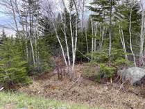 Lots and Land for Sale in Nova Scotia, Williamswood, Nova Scotia $89,900