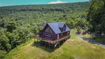 Homes for Sale in Berkeley Springs, West Virginia $350,000