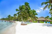 Condos for Sale in North Island Area, Ambergris Caye, Belize $90,000