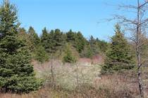 Lots and Land for Sale in Victoria, Newfoundland and Labrador $69,500