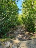 Lots and Land Sold in Coldstream, Vernon, British Columbia $49,900