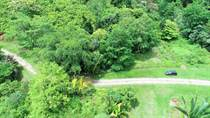 Lots and Land for Sale in Bajamar, Chontales, Puntarenas $35,000