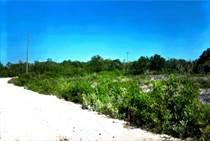 Lots and Land for Sale in Sarteneja, Corozal $25,000