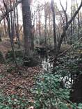 Lots and Land for Sale in Jefferson, South Carolina $20,000