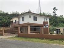 Homes for Sale in PLANAS, Isabela, Puerto Rico $83,000