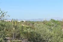 Homes for Sale in El Centenario, La Paz, Baja California Sur $65,000