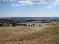 Farms and Acreages for Sale in Figueira de Castelo Rodrigo , Figueira de Castelo Rodrigo, Guarda €3,200,000