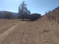 Lots and Land for Sale in Baja California , Rosarito B.C, Baja California $443,520
