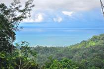 Lots and Land Sold in Uvita, Puntarenas $139,000