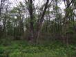 Homes for Sale in Dickson Township, Michigan $39,000