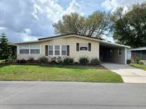 Homes for Sale in Foxwood Village, Lakeland, Florida $32,000