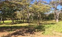 Homes for Sale in Portogolpe, Santa Cruz, Guanacaste $54,999