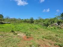 Lots and Land for Sale in BO BORINQUEN, Aguadilla, Puerto Rico $445,000