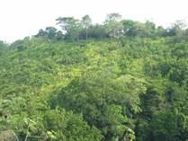 Lots and Land for Sale in Herradura, Puntarenas $325,000