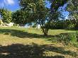 Lots and Land for Sale in San Ignacio, Cayo $39,000