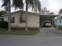 Homes for Sale in Grand Valley, New Port Richey, Florida $55,000