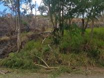 Lots and Land for Sale in Ensenada , Rincon, Puerto Rico $55,000