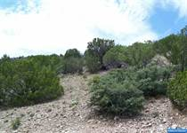 Lots and Land for Sale in New Mexico, Mimbres, New Mexico $36,000