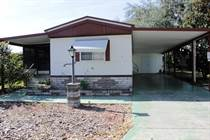 Homes for Sale in Tropical Acres Estates, Zephyrhills, Florida $24,500