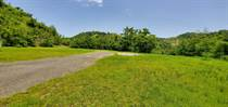 Lots and Land for Sale in Bo Quebrada Larga, AÑASCO, Puerto Rico $950,000