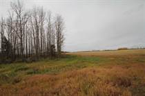 Lots and Land for Sale in Smoky Lake County, Alberta $254,900