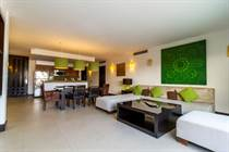 Condos for Rent/Lease in Downtown, Playa del Carmen, Quintana Roo $200 daily