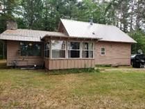 Homes Sold in Mercer, Wisconsin $200,000