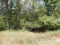 Lots and Land for Sale in Wisconsin Dells, Wisconsin $38,500
