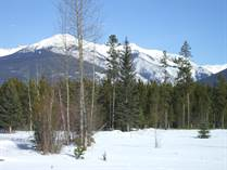 Lots and Land for Sale in Valemount, British Columbia $1,250,000