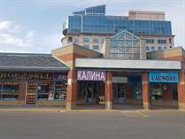 Commercial Real Estate for Sale in Steeles/Bathurst, Thornhill, Ontario $300,000