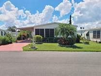 Homes for Sale in Foxwood Village, Lakeland, Florida $44,500