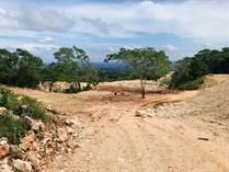 Lots and Land for Sale in Cabrera, Maria Trinidad Sanchez $116,000